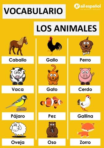LOS ANIMALES - AIL Malaga Spanish Language School study materials