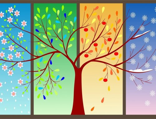 Andalucían seasons. What is your favourite?