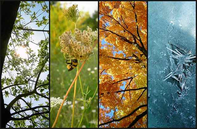 Four seasons - andalucia